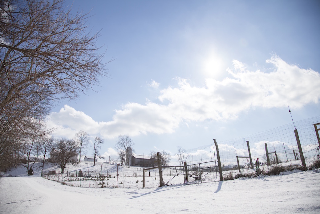 Visual Storytelling: Photographing a Farm in Winter